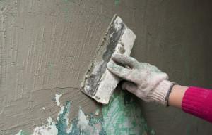 plaster service in Lake Stevens